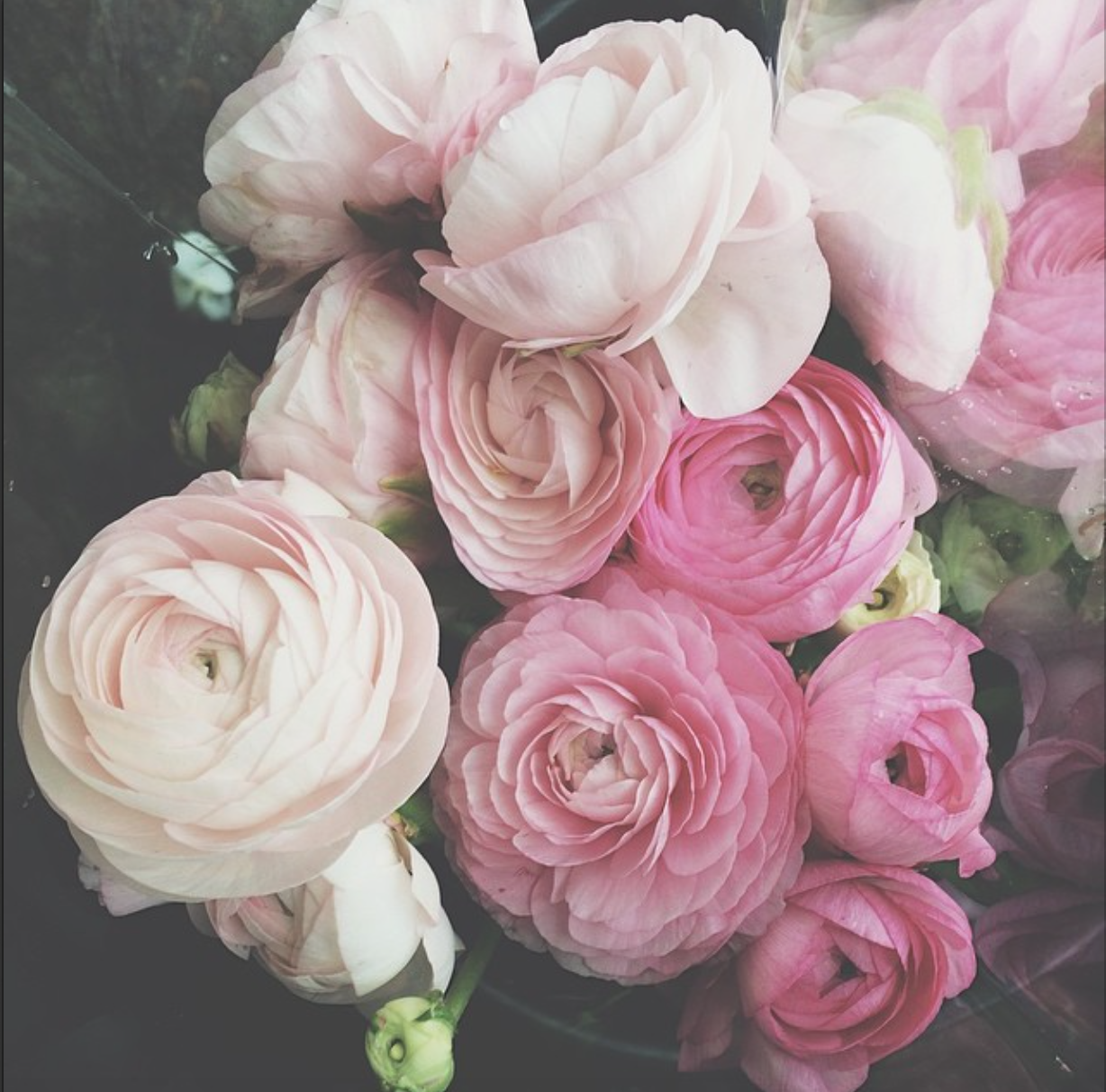 My funny valentine, a playlist for that special someone