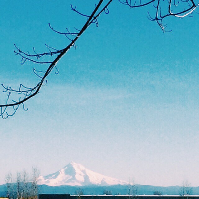 Clear and bright....life is good #pdx #VSCOcam