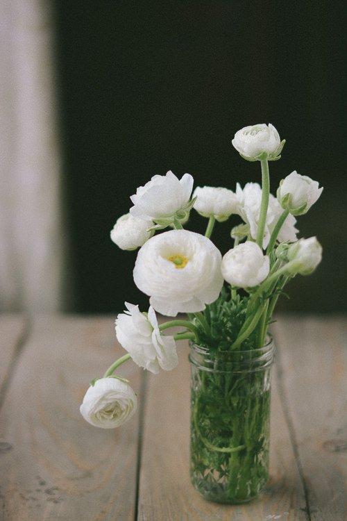 Ranunculus - www.scalingbackblog.com