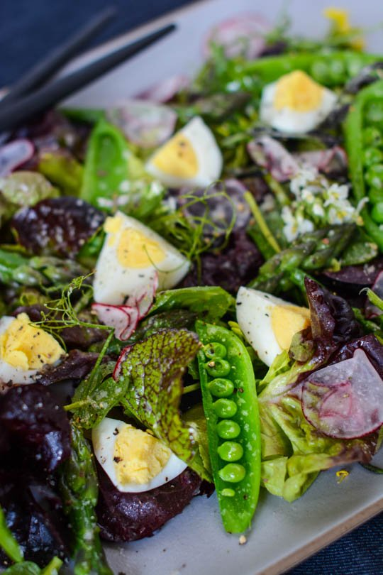 Spring market salad, shop locally to find the best in season produce