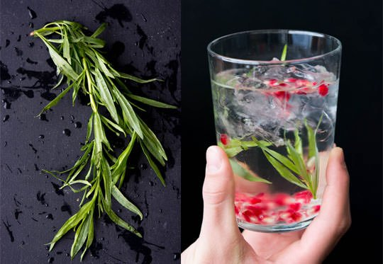 Pomegranate tarragon detox water | 3 simple ingredients to help increase your metabolism in one easy step