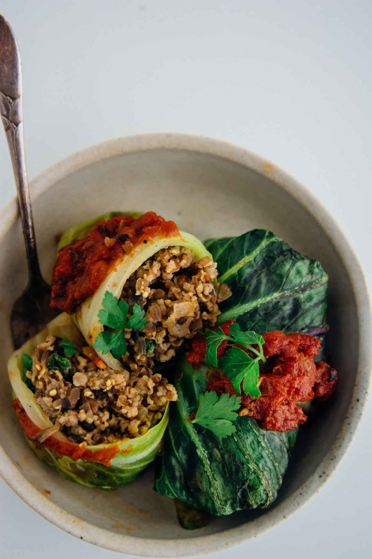 vegan stuffed cabbage rolls | www.scalingbackblog.com